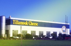 tillamook-cheese-tour