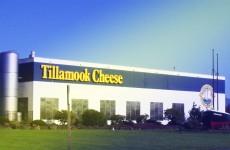 tillamook-cheese-tour